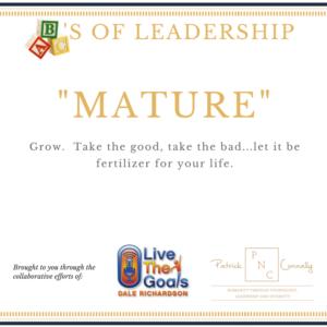 ABC's of Leadership (Mature)